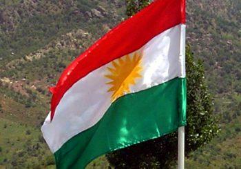 Presseerklärung zum Verbot kurdischer Symbole, 14.02.2018